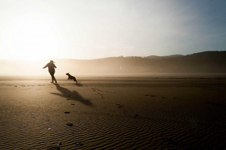 Mornington Peninsula Community Dog Club Beach