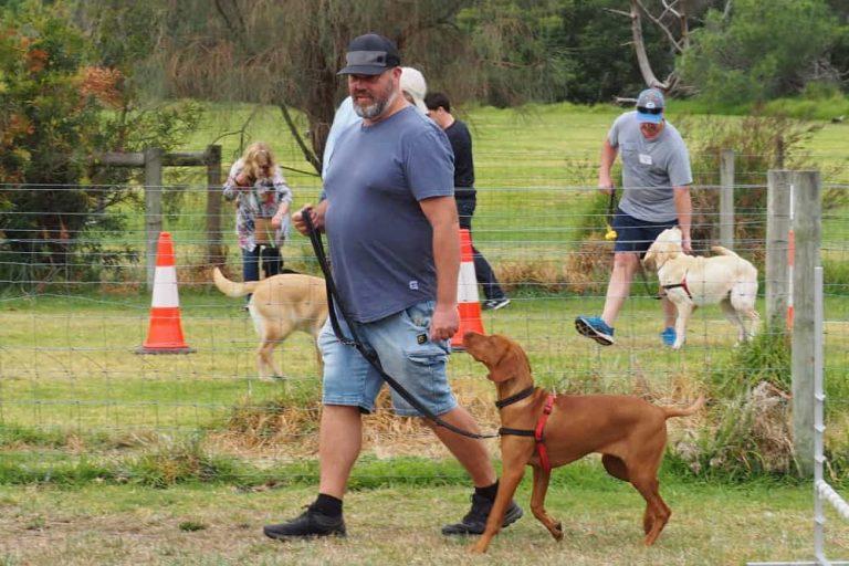 Mornington Dog Training 9